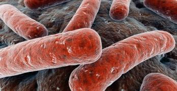 Over 350 San Jose babies, moms at risk of tuberculosis